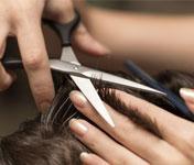 Adult Hair Cut